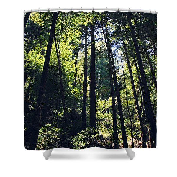 Because You Loved Me Shower Curtain by Laurie Search