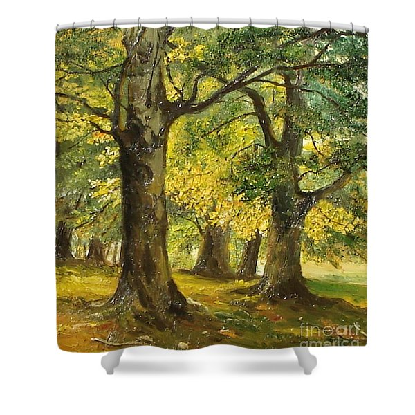 Beeches In The Park Shower Curtain by Sorin Apostolescu