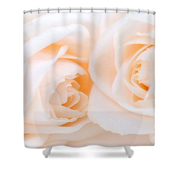 Beige roses Shower Curtain by Elena Elisseeva