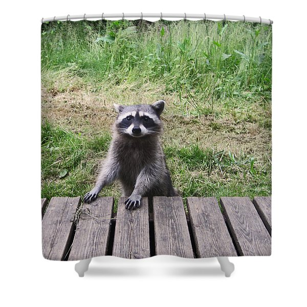 Belly Up To The Bar Shower Curtain by Kym Backland