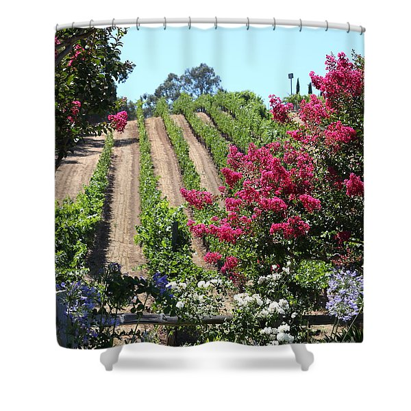 Benziger Winery In The Sonoma California Wine Country 5d24495 Vertical Shower Curtain by Wingsdomain Art and Photography