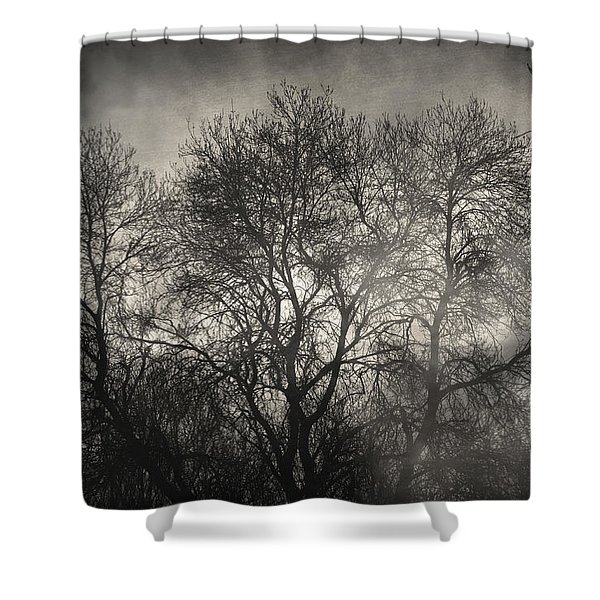 Beyond The Morning Shower Curtain by Taylan Soyturk