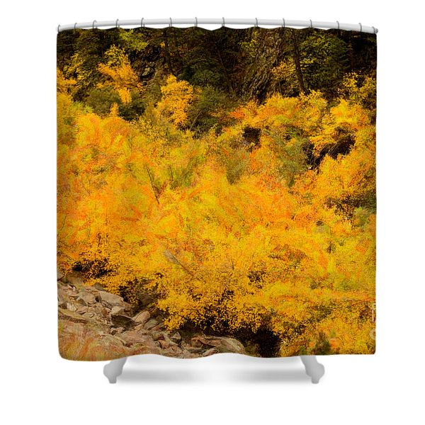Big Thompson River - 9 Shower Curtain by Jon Burch Photography