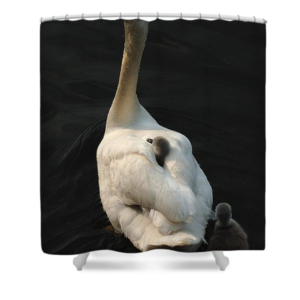 Birds Of A Feather Stick Together Shower Curtain by Bob Christopher