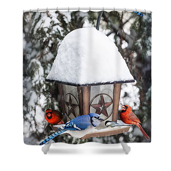 Birds On Bird Feeder In Winter Shower Curtain by Elena Elisseeva