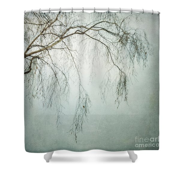 bleakly III Shower Curtain by Priska Wettstein