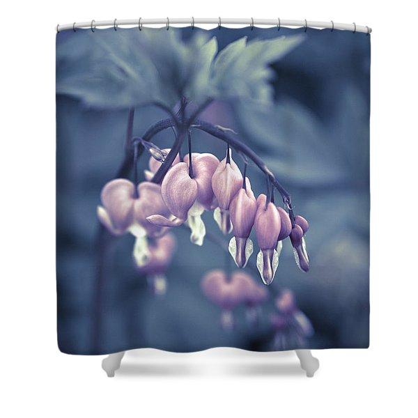Shower Curtains - Bleeding Heart Flower Shower Curtain by Frank Tschakert
