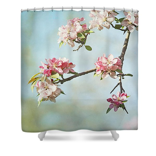 Blossom Branch Shower Curtain by Kim Hojnacki