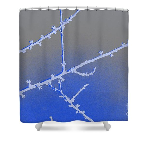 Blue Branches 2 Shower Curtain by Carol Lynch