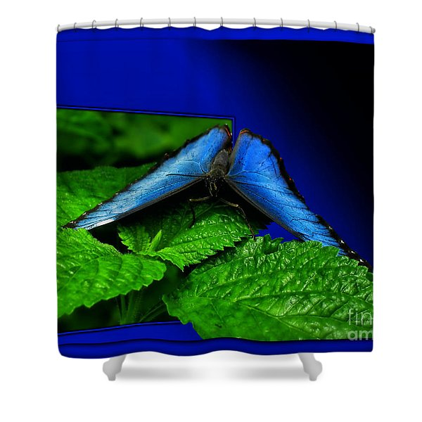 Blue Butterfly 02 Shower Curtain by Thomas Woolworth