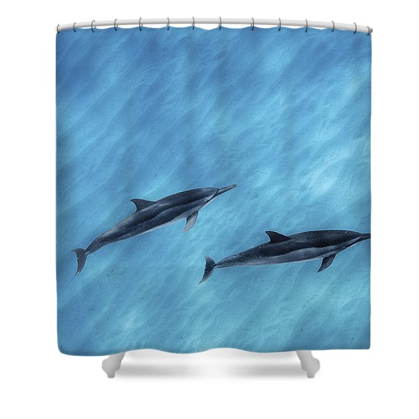 Blue Chill Shower Curtain by Sean Davey