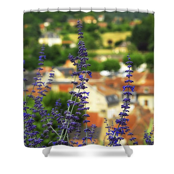 Blue flowers and rooftops in Sarlat Shower Curtain by Elena Elisseeva