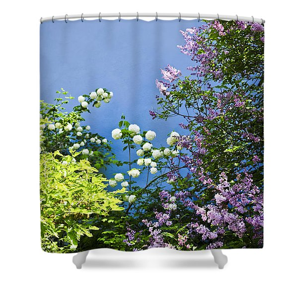 Blue wall with flowers Shower Curtain by Elena Elisseeva