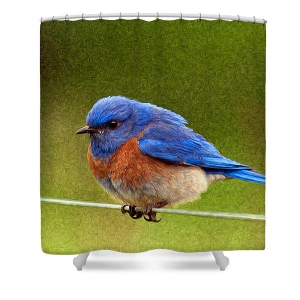 BlueBird  Painting Shower Curtain by Jean Noren