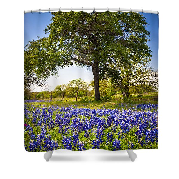Bluebonnet Meadow Shower Curtain by Inge Johnsson