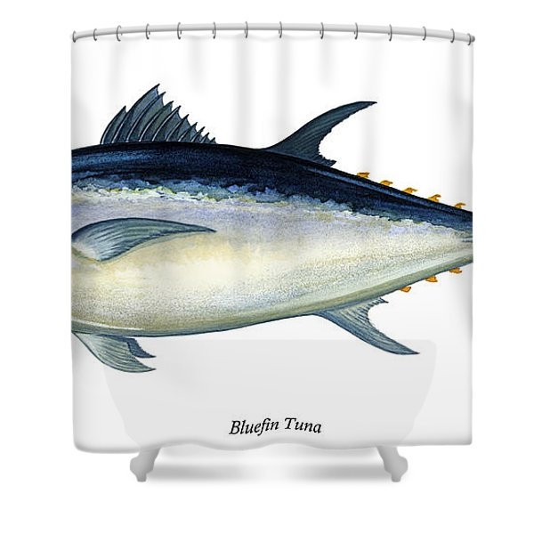 Bluefin Tuna Shower Curtain by Charles Harden