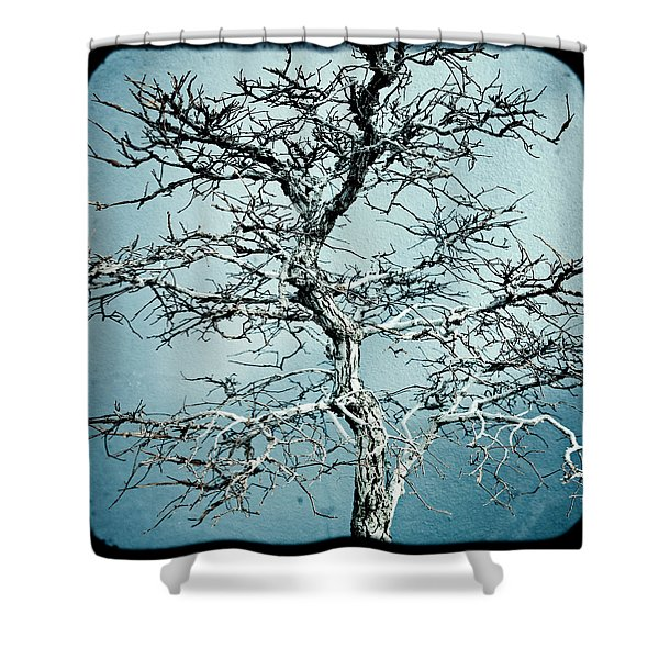 Bonsai Shower Curtain by Gary Heller