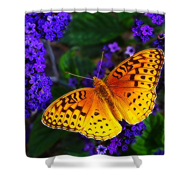 Boothbay Butterfly Shower Curtain by Bill Caldwell -        ABeautifulSky Photography