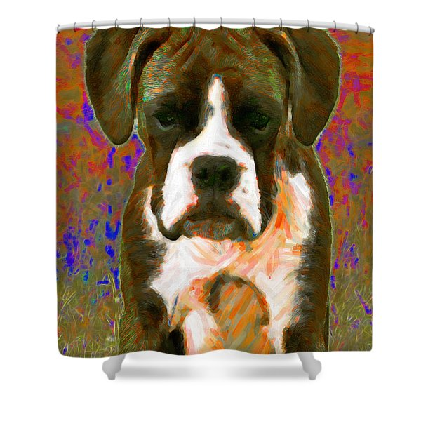 Boxer 20130126v1 Shower Curtain by Wingsdomain Art and Photography