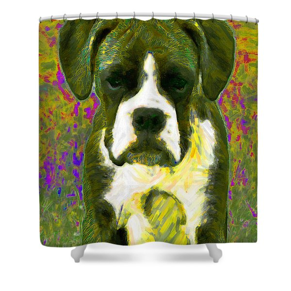 Boxer 20130126v2 Shower Curtain by Wingsdomain Art and Photography