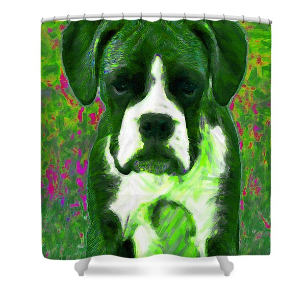 Boxer 20130126v3 Shower Curtain by Wingsdomain Art and Photography
