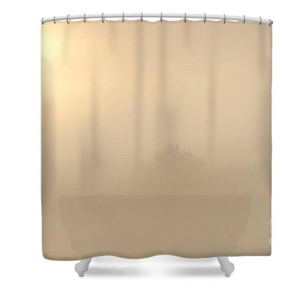 Breaking Through Shower Curtain by Mike  Dawson