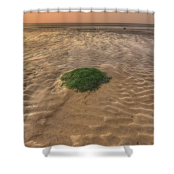 Breeze Of Dawn Shower Curtain by Evelina Kremsdorf