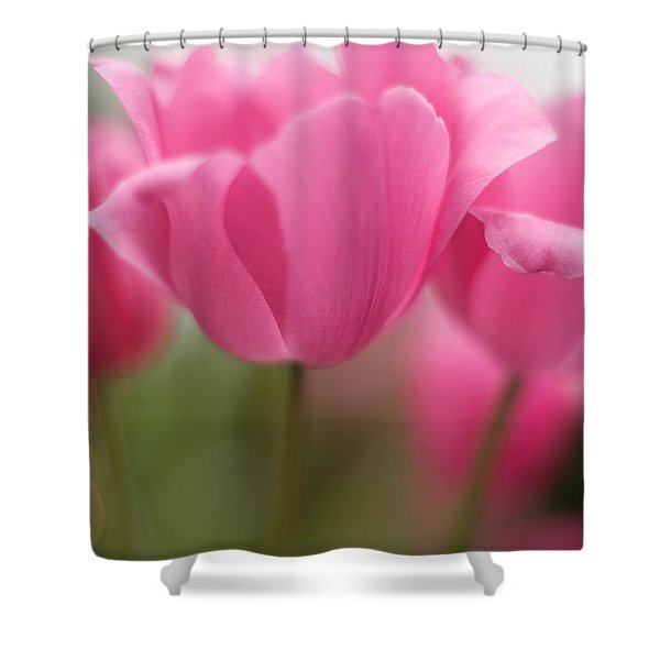Bright Bunch Of Tulips Shower Curtain by Mike Reid