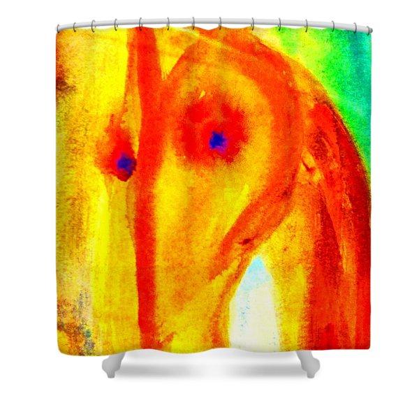 Bright eyes burning   Shower Curtain by Hilde Widerberg