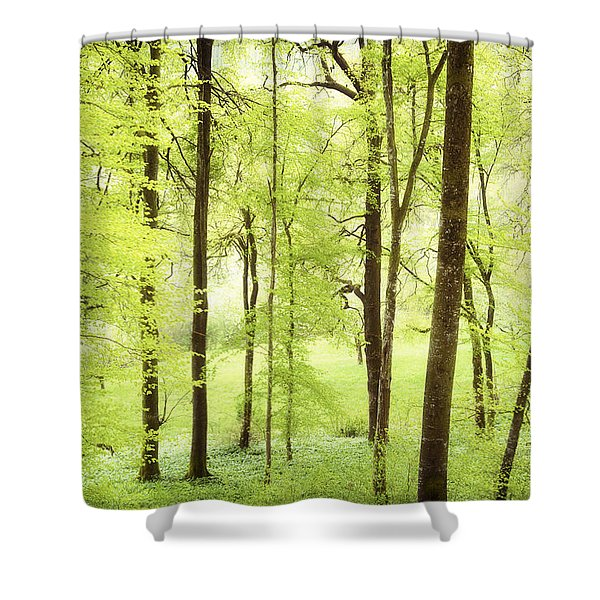 Bright Green Forest In Spring With Beautiful Soft Light Shower Curtain by Matthias Hauser