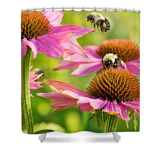 Bumbling Bees Shower Curtain by Bill Pevlor