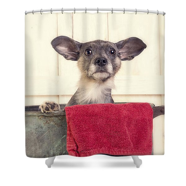 But I don't want a bath Shower Curtain by Edward Fielding