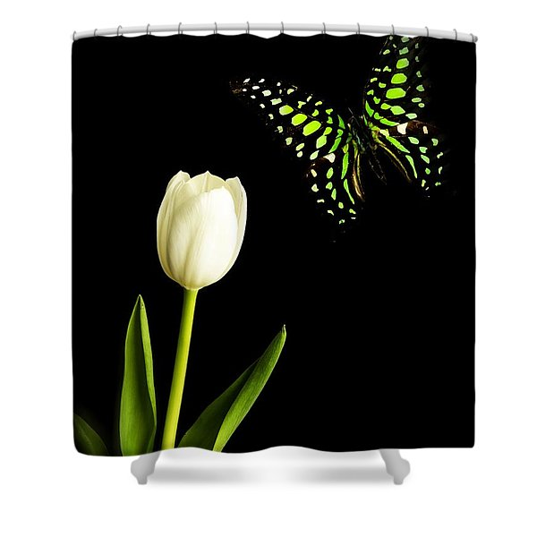 Butterfly And Tulip Shower Curtain by Edward Fielding