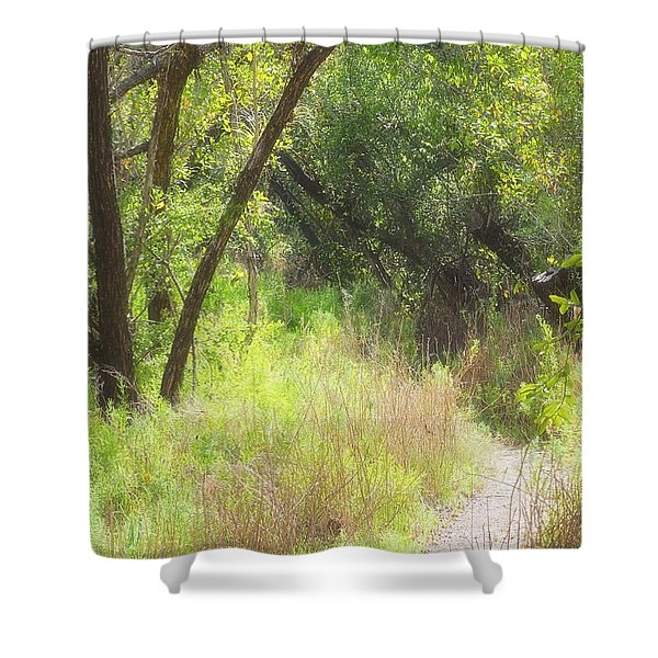 buttonwood forest Shower Curtain by Rudy Umans