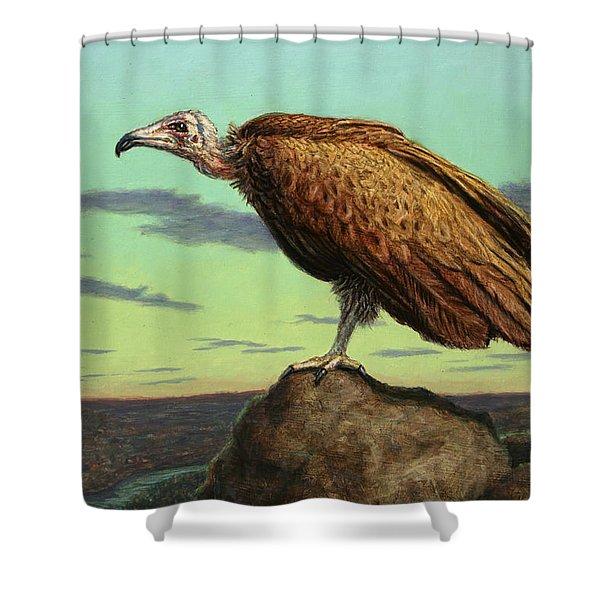 Buzzard Rock Shower Curtain by James W Johnson
