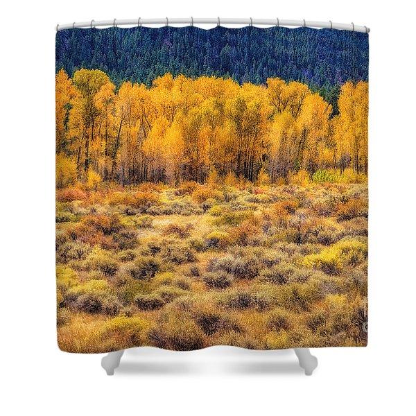 Cache La Poudre River Colors Shower Curtain by Jon Burch Photography