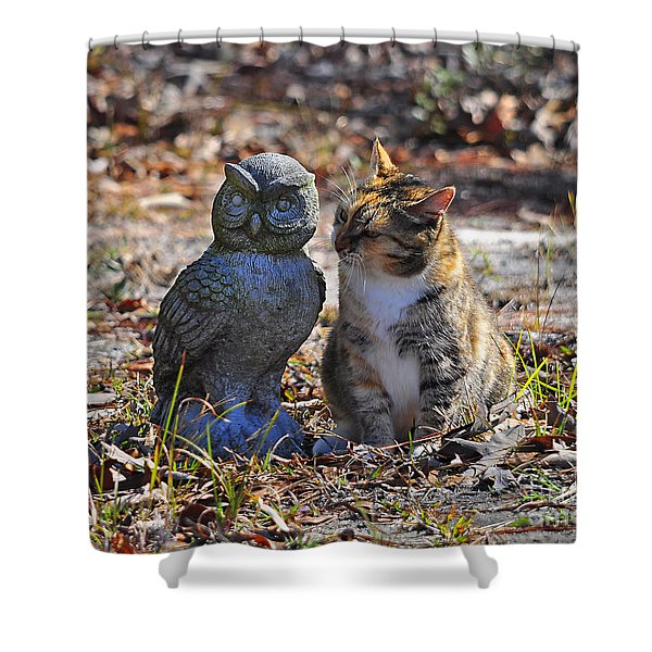 Calico Cat and Obtuse Owl Shower Curtain by Al Powell Photography USA