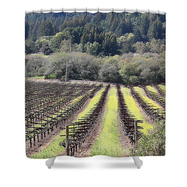 California Vineyards In Late Winter Just Before The Bloom 5D22051 Shower Curtain by Wingsdomain Art and Photography