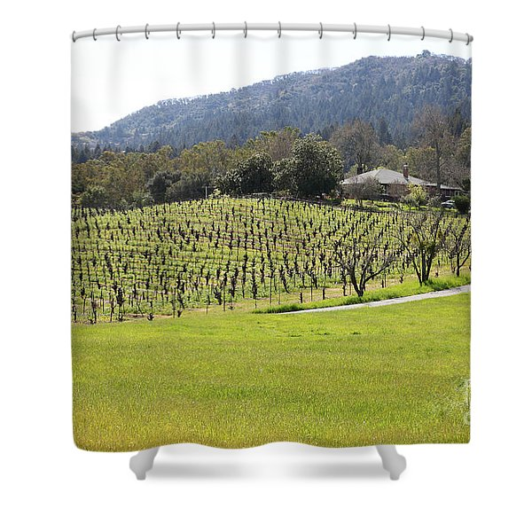 California Vineyards In Late Winter Just Before The Bloom 5d22073 Shower Curtain by Wingsdomain Art and Photography