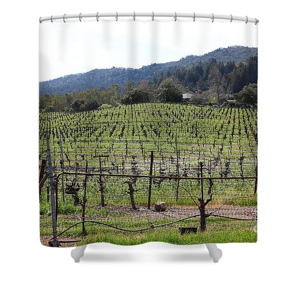 California Vineyards In Late Winter Just Before The Bloom 5D22088 Shower Curtain by Wingsdomain Art and Photography
