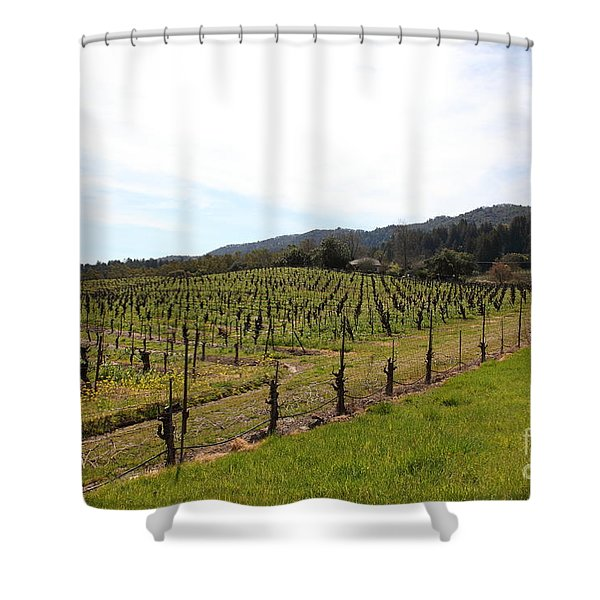 California Vineyards In Late Winter Just Before The Bloom 5D22114 Shower Curtain by Wingsdomain Art and Photography