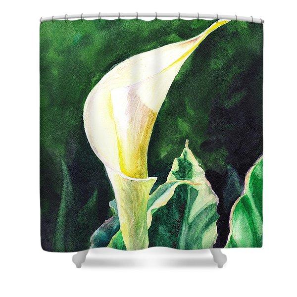 Calla Lily Shower Curtain by Irina Sztukowski