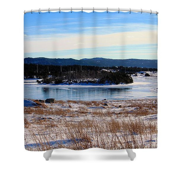 Calling All Skaters Shower Curtain by Barbara Griffin