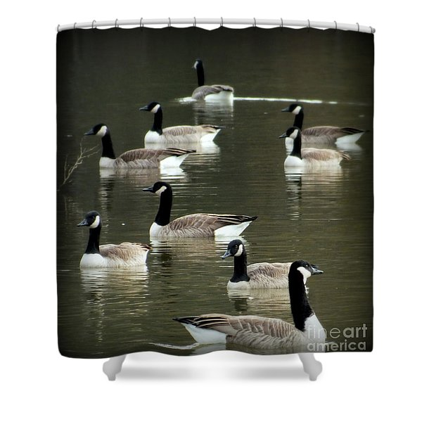 CALM WATERS Shower Curtain by KAREN WILES