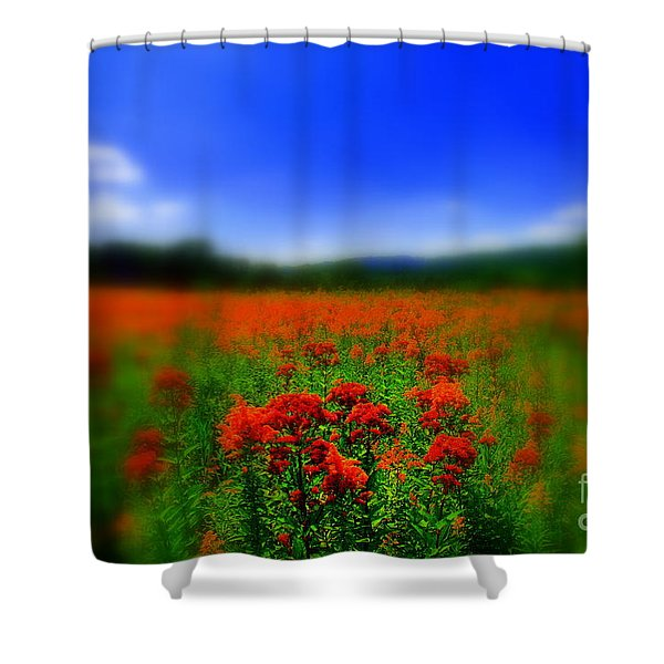Candyland Shower Curtain by Neal  Eslinger