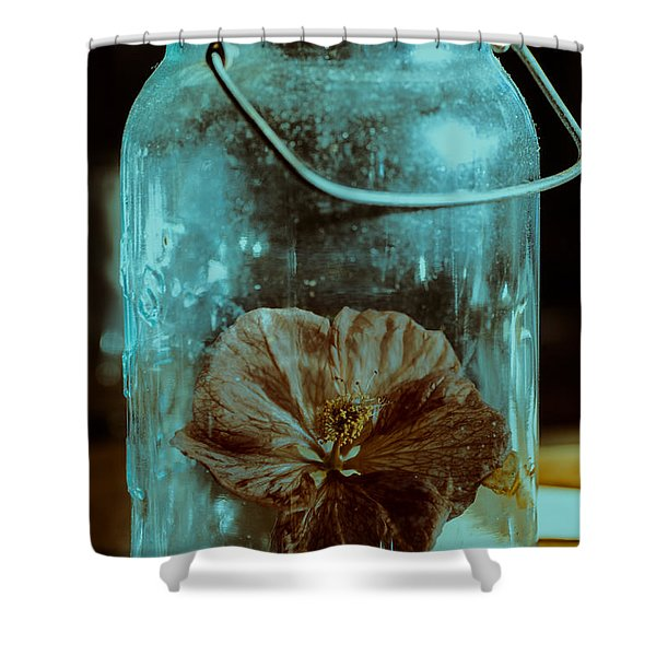 Canned Spring Shower Curtain by Susan Capuano