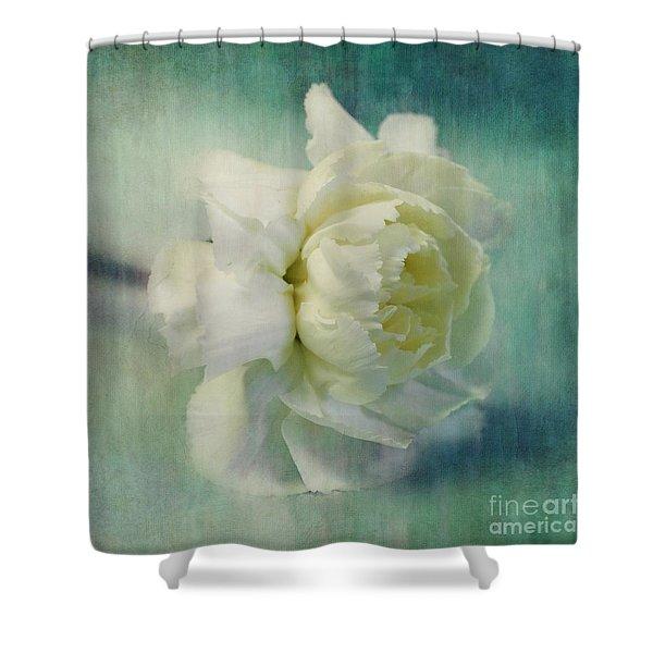 carnation Shower Curtain by Priska Wettstein