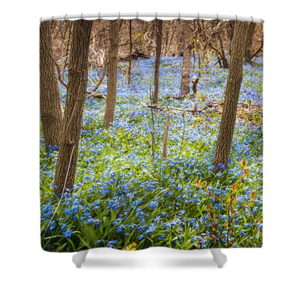 Carpet of blue flowers in spring forest Shower Curtain by Elena Elisseeva