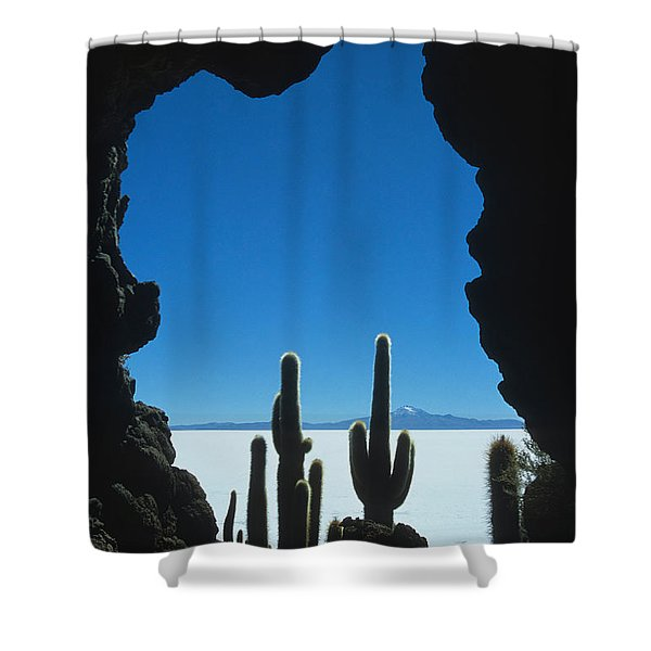 Cave and cacti Shower Curtain by James Brunker