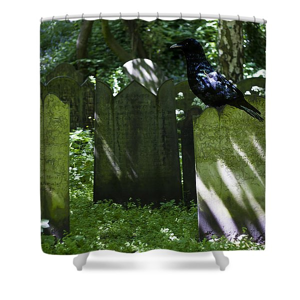 Cemetery with Ancient Gravestones and Black Crow  Shower Curtain by Nomad Art And  Design